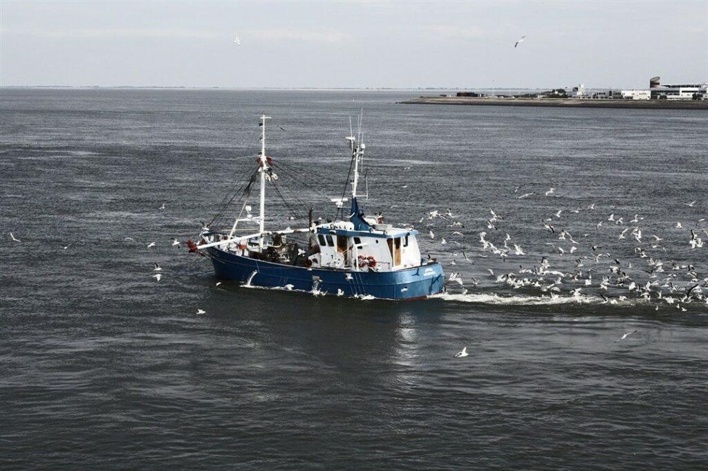 trawler met meeuwen